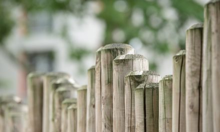 Quel est l'intérêt d'un bornage de terrains ?