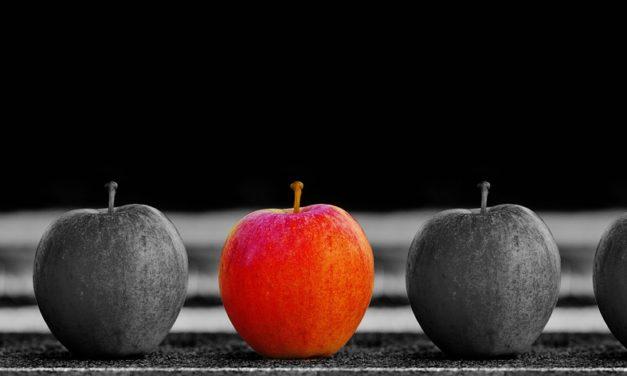 Pourquoi préférer IMMOFINANCES aux autres courtiers ?