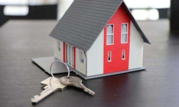 Crédit professionnel : quels sont les points importants à savoir sur ce prêt ?